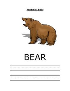 Animals: Bear Worksheet