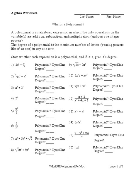 What is a Polynomial? Worksheet