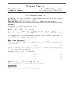 Complex Analysis:  Polynomial Equations Worksheet