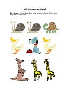 Which Pictures Are the Same? Animals Worksheet