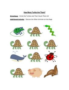 How Many Turtles Are There? Worksheet