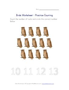 Bird Worksheet - Practice Counting Worksheet