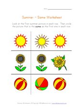Summer - Same Worksheet Worksheet