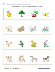 Classifying Pictures 2 Worksheet