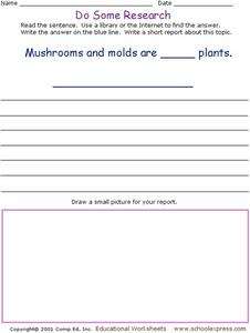 Do Some Research: Fungi  Worksheet