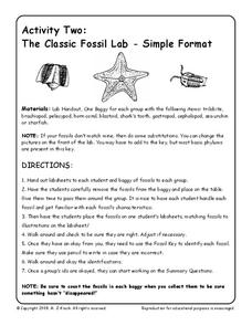 Activity Two: The Classic Fossil Lab-Simple Format Interactive