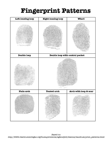 Fingerprint Patterns Worksheet for 7th - 9th Grade | Lesson ...