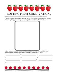 Rotting Fruit Observations Worksheet