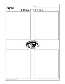 Sight: 4 Things I Can See Worksheet