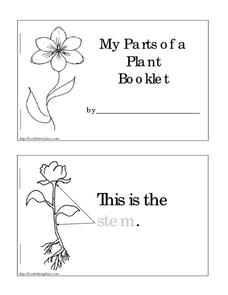 Parts of a Plant Booklet Worksheet