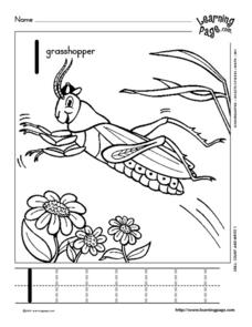 Grasshopper Number Worksheet Worksheet