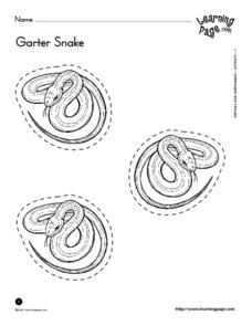 Garter Snake Cut Out Worksheet