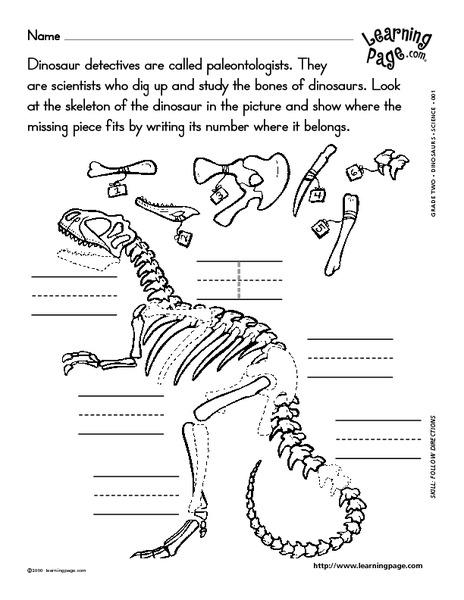 dinosaur detective worksheet for 3rd 4th grade lesson planet. Black Bedroom Furniture Sets. Home Design Ideas