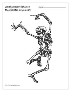 Halloween Skeleton Worksheet