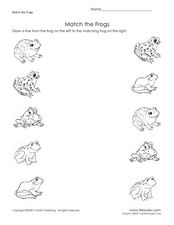 Match the Frogs Worksheet