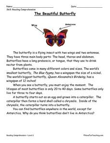 The Beautiful Butterfly: Reading Comprehension Worksheet