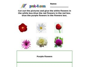 Cut and Paste Flowers Worksheet