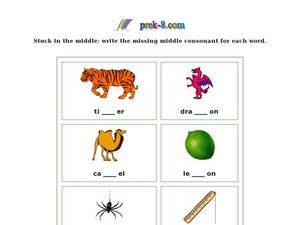 Missing Middle Consonants Worksheet