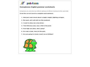 Homophone English Grammar Worksheet Worksheet