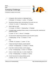 Camping Challenge Worksheet