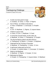 Thanksgiving Challenge Worksheet