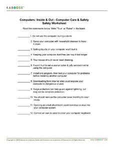 Computers: Inside & Out - Computer Care & Safety Worksheet Worksheet