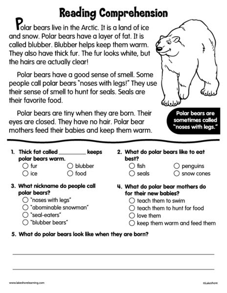 Reading Comprehension: Polar Bears 2nd - 4th Grade Worksheet ...