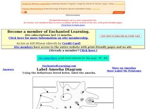 Amoeba Diagram Worksheet