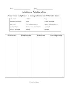 Nutritional Relationships Chart Worksheet