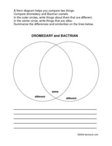 Dromedary and Bactrian Venn Diagram Worksheet
