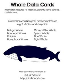 Whale Data Cards Worksheet