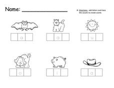 Three Letter CVC Words Worksheet