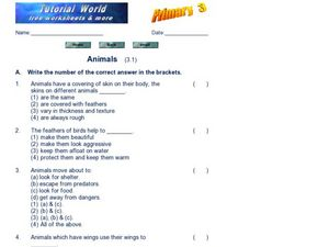 Animals (3.1) Worksheet