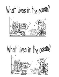What Lives in the Ocean? Worksheet