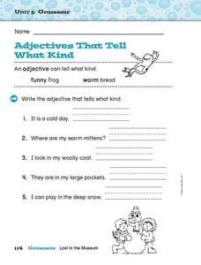 Adjectives That Tell What Kind Worksheet