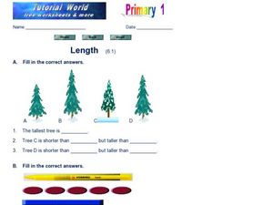 Length - Comparing Height and Length Worksheet