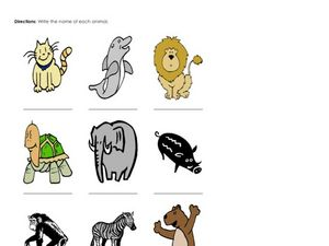 Name the Animals Worksheet