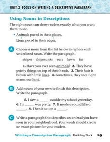 Using Nouns in Descriptions Worksheet