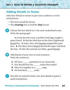 Adding Details to Nouns Worksheet for 4th - 5th Grade