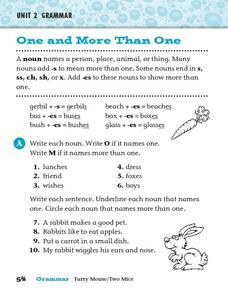 One and More Than One Worksheet
