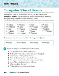 Unit 2 Grammar - Irregular Plural Nouns Worksheet
