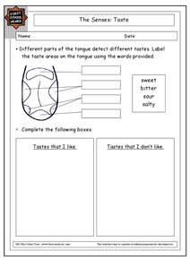 The Senses: Taste Worksheet