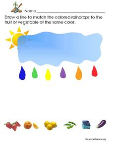 Match the Colored Raindrops, Fruit, and Vegetable Lesson Plan