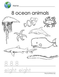 8 Ocean Animals Lesson Plan
