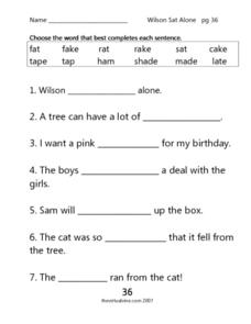 Wilson Sat Alone: p. 36 Worksheet
