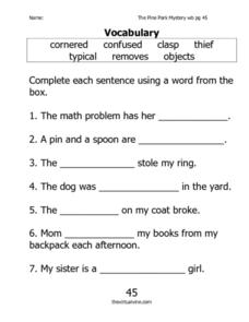 """The Pine Park Mystery"" Vocabulary Worksheet"