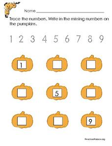 Number Practice: 1-9 Lesson Plan