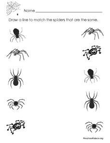Matching Pairs: Spiders Worksheet