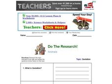 Do the Research: Animal Gestation Worksheet