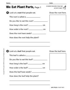 We Eat Plant Parts Worksheet